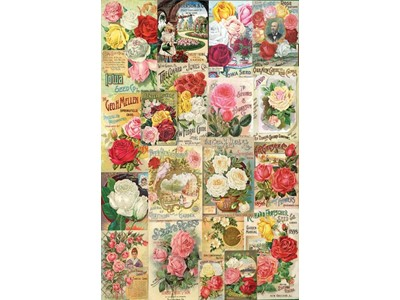 Roses - Seed Catalogue Collection