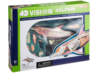 Anatomi 4D Vision Dolphin