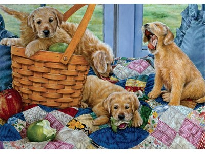 Playful Puppies by Susan Barbeau
