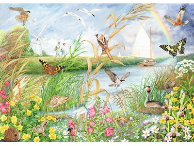 Norfolk broads by Anne Searle