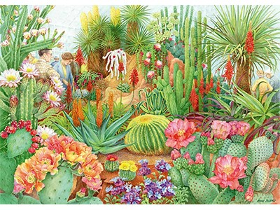 The Flower Show: Desert Plants by Anne Searle