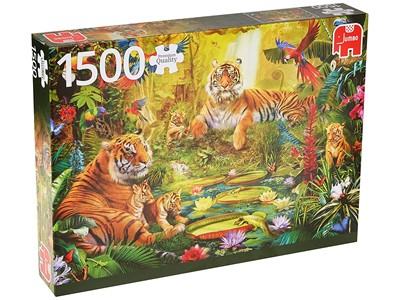 Tigers in jungle