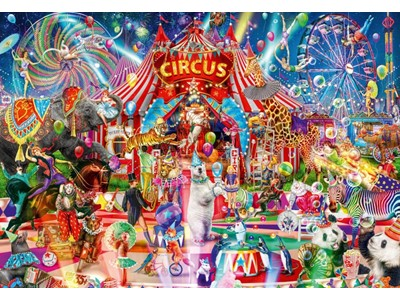 A nigth in Circus