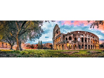 Colosseum at dawn Panorama